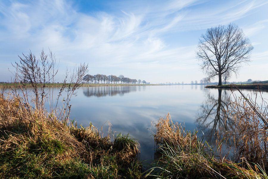 De Maas bij Cuijk