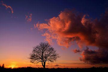 Kom bij me zitten op een roze wolk van Joyce Derksen