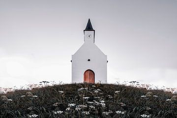 Der Hügel von Leidschenveen von Steven Dijkshoorn