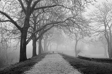 Morgendlicher Spaziergang von Pieter van Zetten