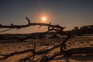 Gouden uur bij zandverstuiving van Rick van de Kraats