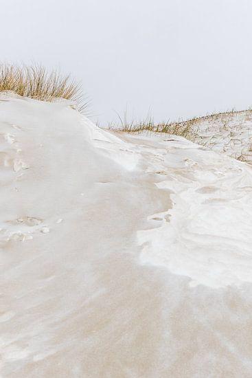 Met sneeuw bedekte duinen | Winterlandschap Nederland Den Haag