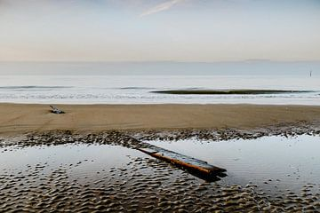 Seelandschaften 2.0 XXI von Steven Goovaerts