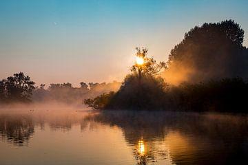 Sonnenaufgang im Biesbosch in den Niederlanden von Evelien Oerlemans