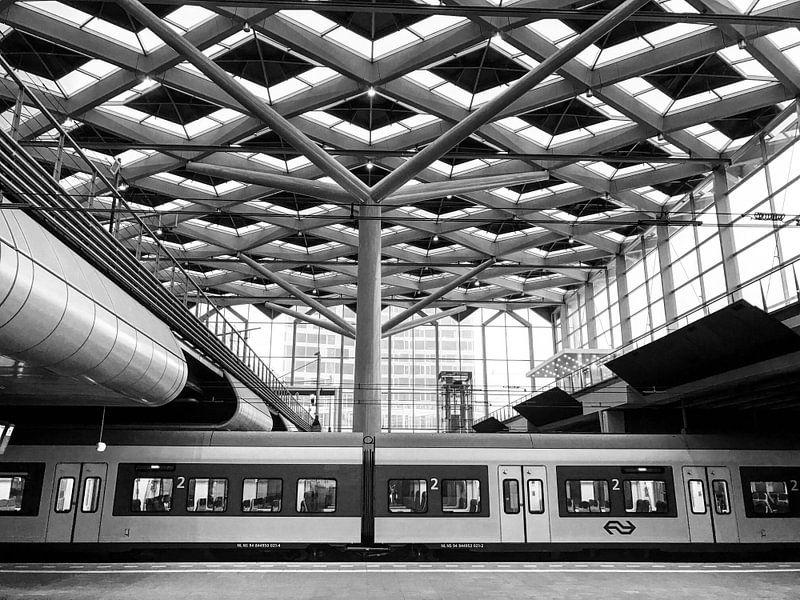 NS Station Den Haag Centraal | Zwart-wit van Carel van der Lippe
