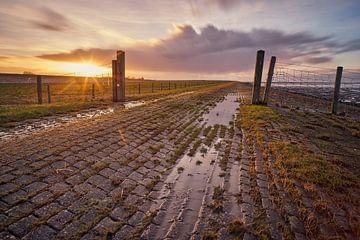 De poort naar it Skoar van Remco de Vries