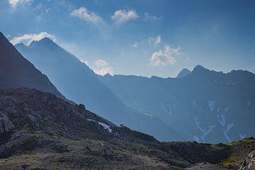 Alpine ibex, Allgäu Alps van Walter G. Allgöwer