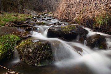Green River van Cornelis (Cees) Cornelissen