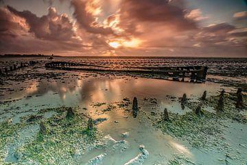 Wrack im Wattenmeer bei Wierum. von Henk Cruiming