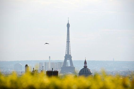 De Eiffeltoren van Bo Kramers