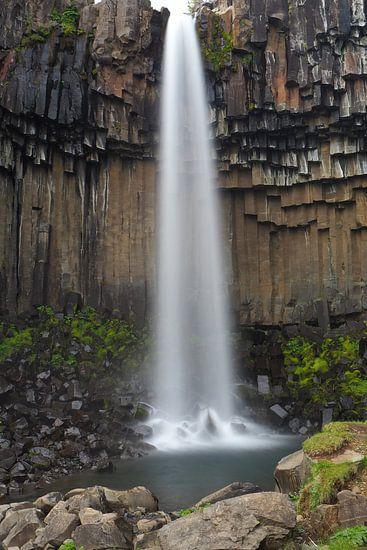 Svartifoss; een bijzondere waterval op IJsland van Wilco Berga