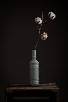 vaas met katoenplant van Raoul van Meel