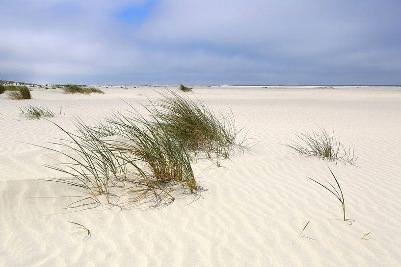 Zandgolven op het Noordzeestrand Juist van Ursula Reins