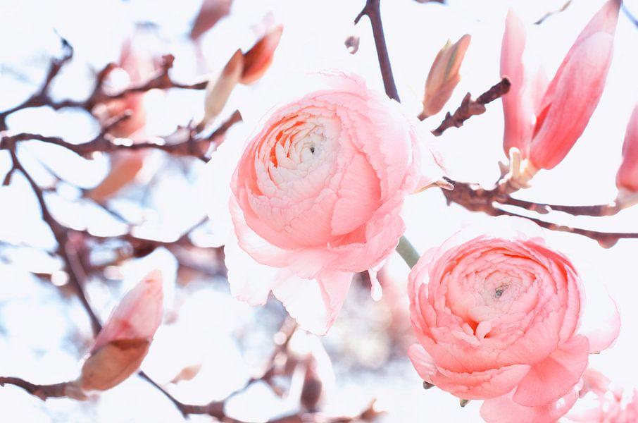 Magnolia bloeit met ranonkel Art Design