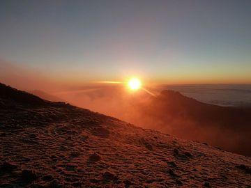 Zonsopgang vanaf Kilimanjaro van