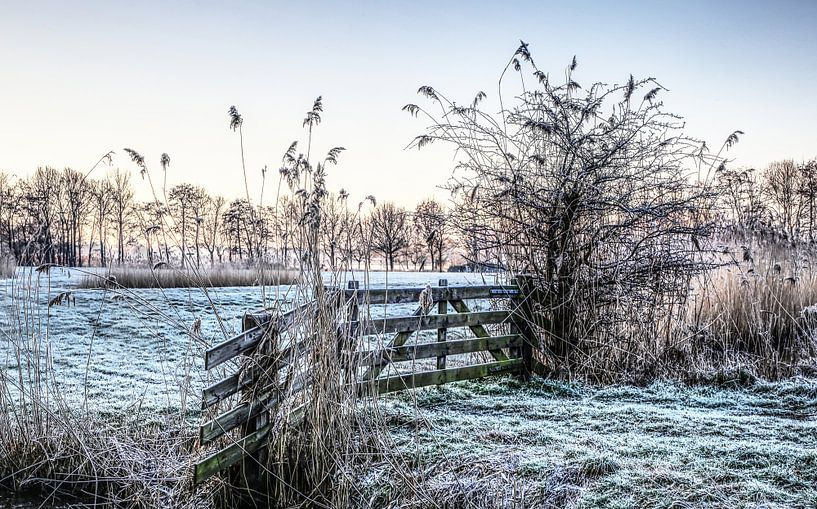 Winterwonderland van Robert Jan Smit