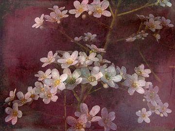 Frühlingsgefühle von Claudia Gründler