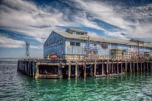 Monterey Harbor van Paul  Voestermans