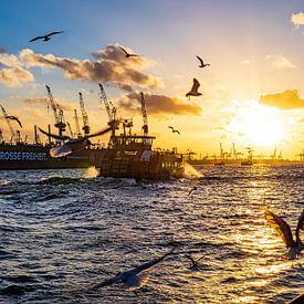 2015-03-02 Landingsbruggen 2015-03-02 van Joachim Fischer