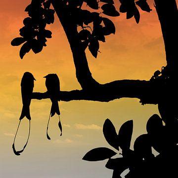Silhouet van paradijs vogels met op de achtergrond de zonsondergang van Gonnie van Hove