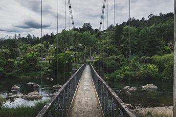 The Coromandel, Nieuw-Zeeland van Tom in 't Veld