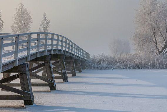 Brug over bevroren water van Bram van Broekhoven