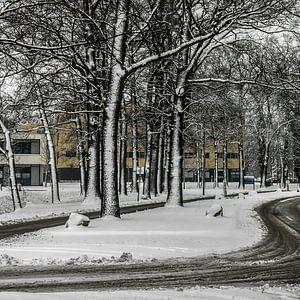 Winters beeld (1) - 2015