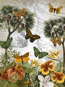 Eiland van de vlinders