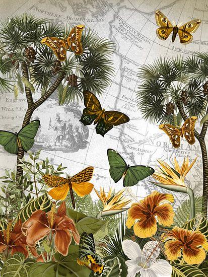 Insel der Schmetterlinge