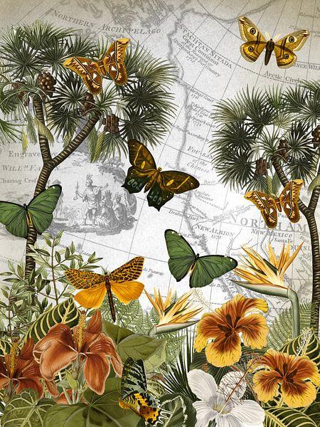 L'île aux papillons sur christine b-b müller