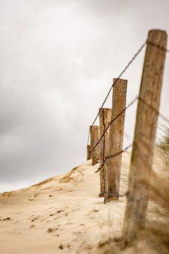 In de duinen van Michael Fousert