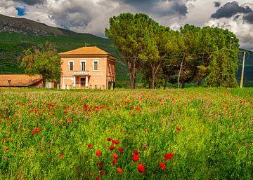 Boerderij in Italië met bloeiende klaprozen II van Teun Ruijters