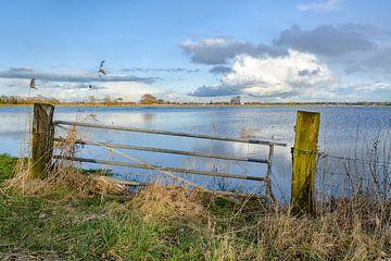 Hochwasser im Flussdelta von Fotografiecor .nl