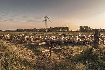 Garden Chair traveling in Zeeland I van Irene van de Wege
