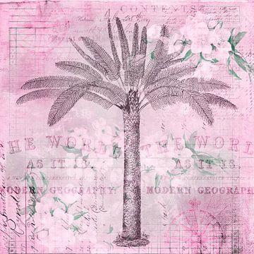 Nostalgische palmboom van Andrea Haase