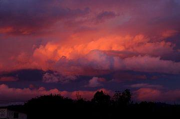 Roze lucht in Botswana van Herman van Egmond