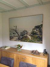 Klantfoto: Ghost tree II van Pascal Deckarm, op canvas