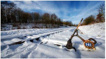 Sneeuwlandschap von Pat Desmet