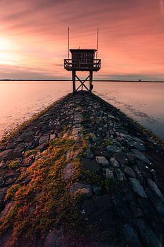 Kratzender Wachturm von Björn van den Berg