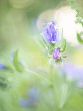Vintage-Blume von Linda Raaphorst