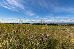 Groß Zicker, Blick zum Klein Zicker, den Zicker See und die Ostsee, Rügen