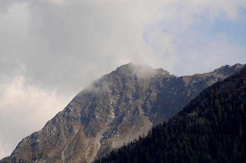 Mountain van Peter Zeedijk