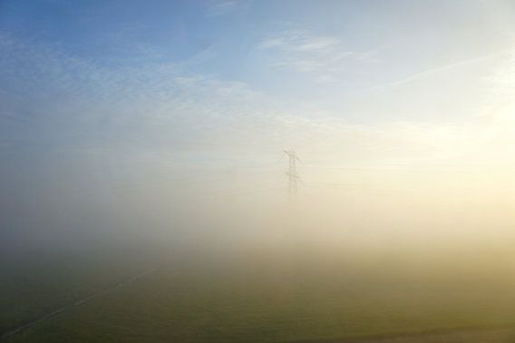 In the mist they appear... van Twan Van Keulen