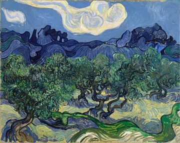 Olivenbäume - Vincent van Gogh von 1000 Schilderijen