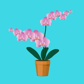 Une orchidée rose dans un pot en terre cuite sur Bianca Wisseloo