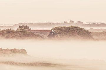 Mistige zonsopkomst Zeeland van Nancy van Verseveld