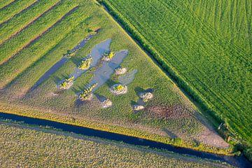 taartpunt land vanuit de lucht van Annette Schoof