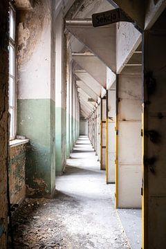 Industriële Gang in Verval. van Roman Robroek