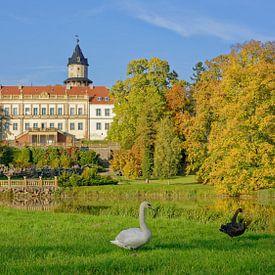 Herbst im Schlosspark Wiesenburg von Gisela Scheffbuch