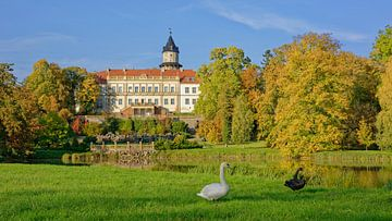 Herbst im Schlosspark Wiesenburg